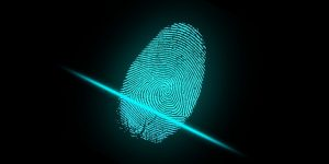 fingerprint used in forensic tracking
